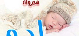 تهنئـــــة: مولود جديد يبعث الفرحة داخل عائلتي شقرون والغربي