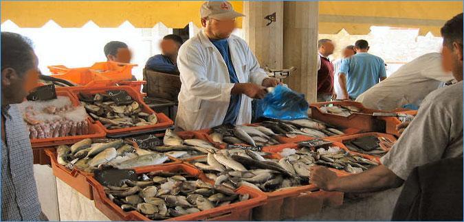 صفاقس: تعليق نشاط بيع الاسماك يوم الثلاثاء القادم: