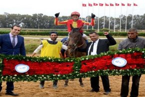 """الجواد """"السراب"""" يفوز بالجائزة الكبرى لرئيس الجمهورية لسباقات الخيول الاصيلة"""