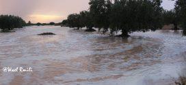 تعرف على كميات الأمطار المسجلة خلال الـ 24 ساعة الأخيرة في ولاية صفاقس
